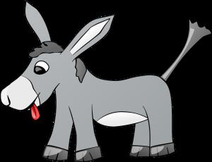 donkey-310798_1280
