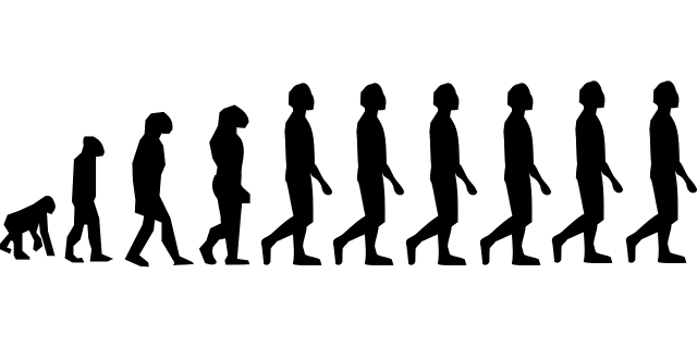 evolution-296584_1280.png